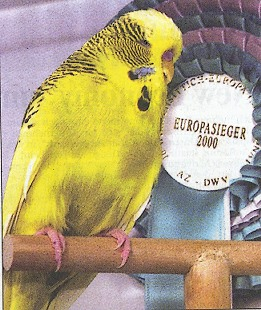europameister 2000